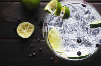 gin and tonic with lime cocktail and ice
