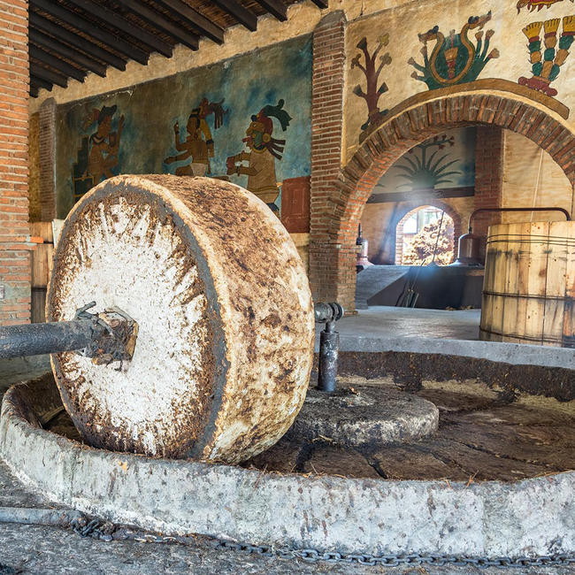 grinding wheel agave production